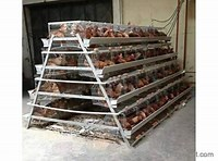 battery-cage-types